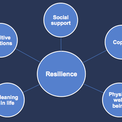 Mason's New Resilience Model: Transforming Fear & Promoting Well-Being