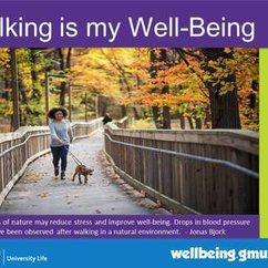 Famous Quotes on Walking and Well-Being