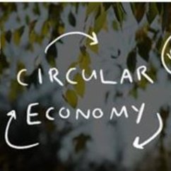 Circular Economy, 3D Printing, and the Biosphere Rules