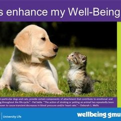 Famous Quotes on Pets and Well-Being