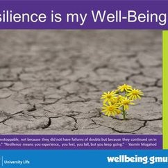 Famous Quotes on Resilience and Well-Being