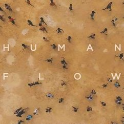 "IIR Hosts Film Screening of ""Human Flow"""