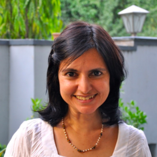 Prof Rashmi Sadana receives NEH, ACLS, and SAR awards for her Delhi Metro research