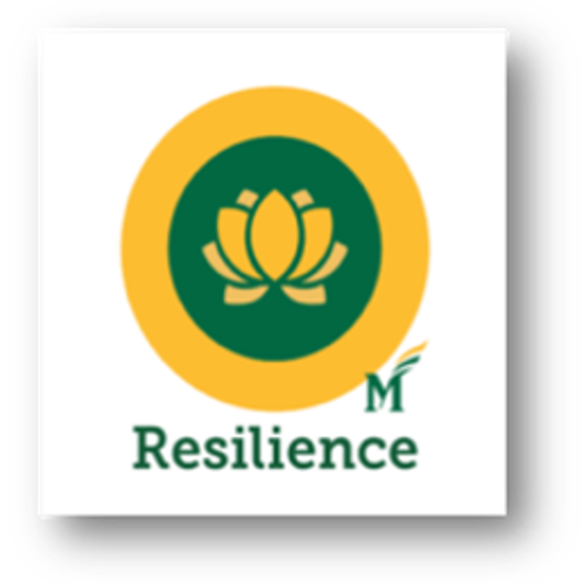 Mason's Resilience Badge to be Expanded Online