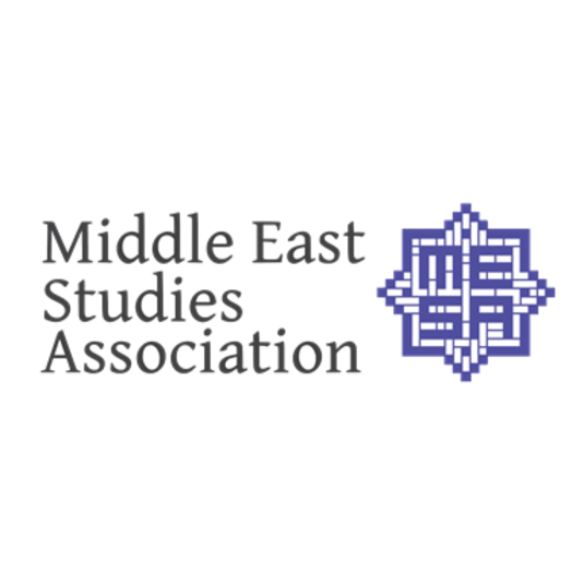 MEIS Adopts the MESA Statement Against Systematic Racism