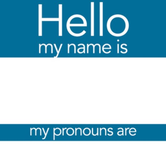 Preferred Name and Pronouns in CHSSWeb