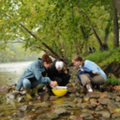 Students Find Calling at Smithsonian-Mason School of Conservation