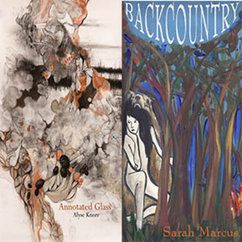 Alums Alyse Knorr and Sarah Marcus Publish Two New Books of Poetry