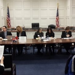 WGST Graduate Assistant, Marisa Allison, Sits on Congressional Briefing Panel