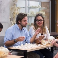 Students Bone Up on Knowledge in Forensic Anthropology