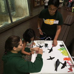 Students Present at Smithsonian Conservation Science Day